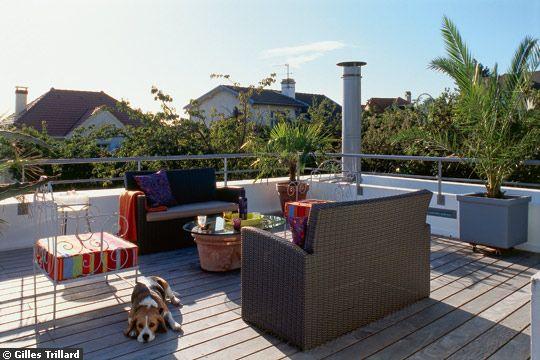 Extension moderne avec toiture terrasse et patio végétalisé